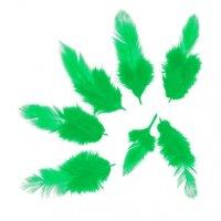Перья Зеленые, 50 шт.