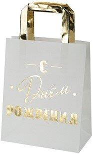 Пакет подарочный, С Днем Рождения! (золотые буквы), Металлик, 23*18*10 см, 1 шт.